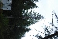 Elk-Falls-220-Antenna-Removal